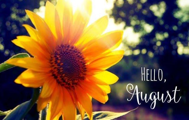 Hi August!