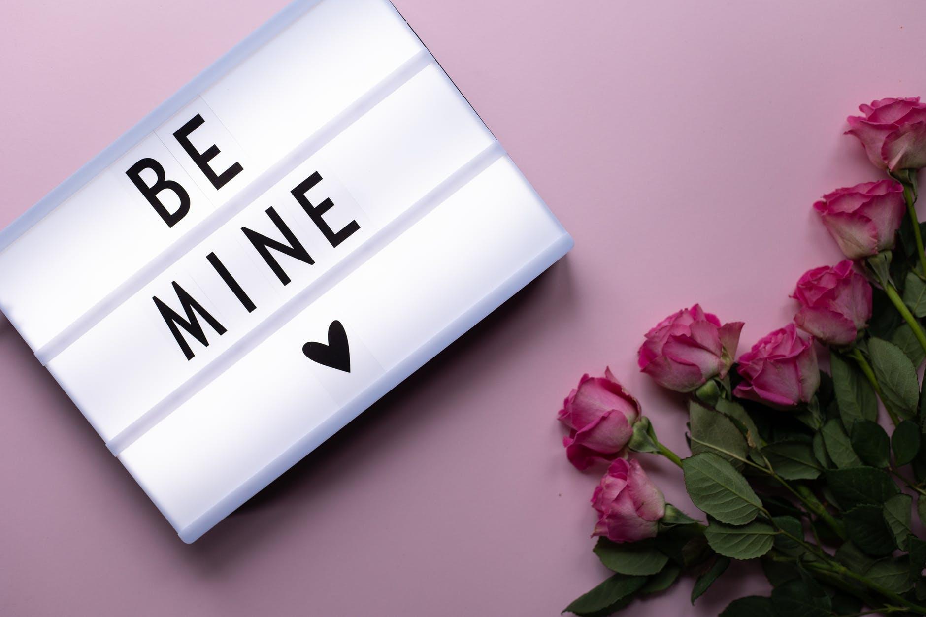 Weekend Recap:  Valentine's Day